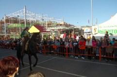 Feria Andaluza Parla