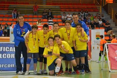 campeonato de minivoley en Alcorcón