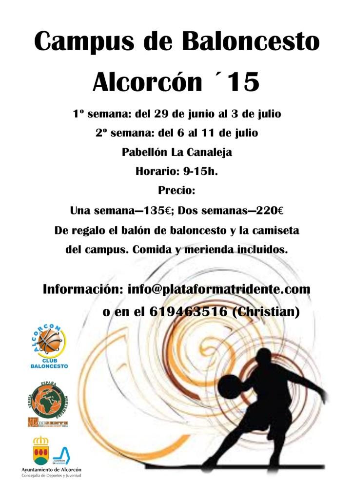 campus de baloncesto alcorcon