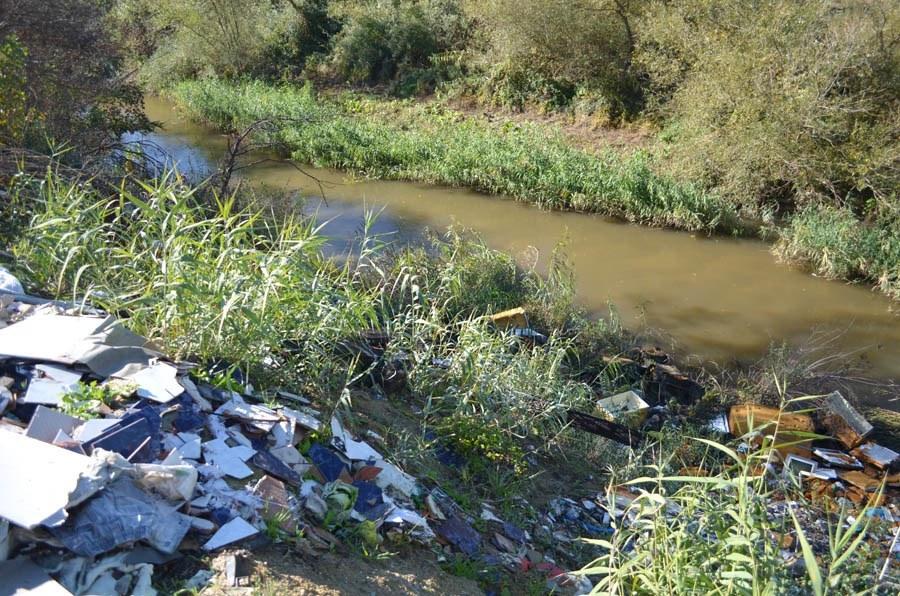 La fauna y la flora del Parque Regional del Guadarrama convive entre escombros, vertidos y basura durante años