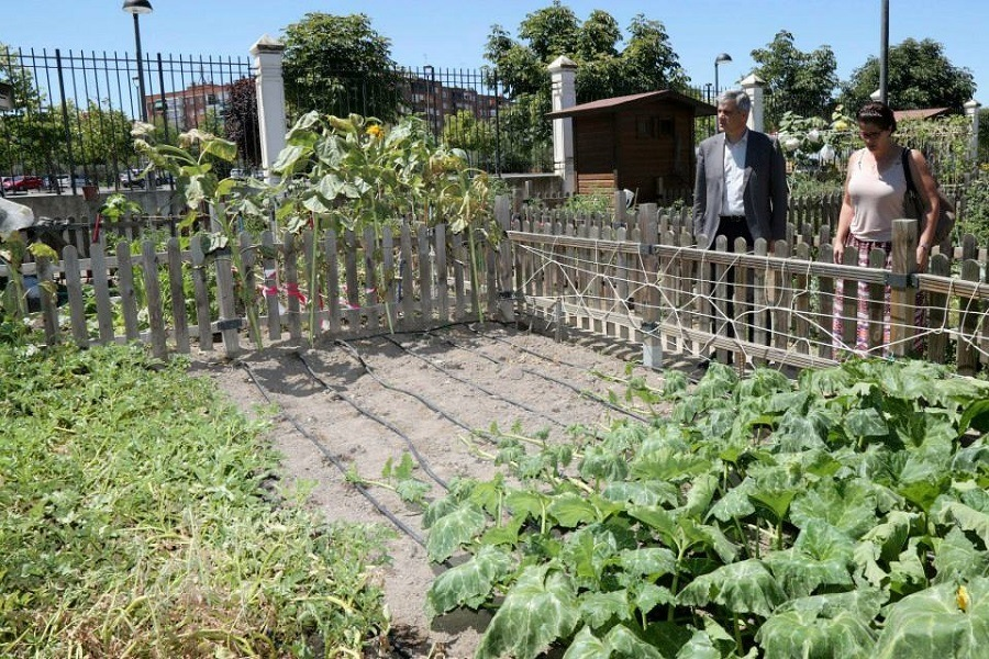 David Lucas junto a la concejala de Medio Ambiente visitando los huertos urbanos de Finca Liana.