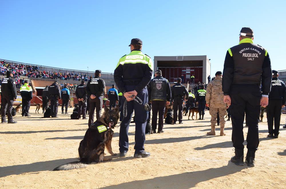 Los 'Perros Policía' han hecho una estupenda exhibición de la mano de los Cuerpos de Seguridad del Estado. Foto: Sonia Baños